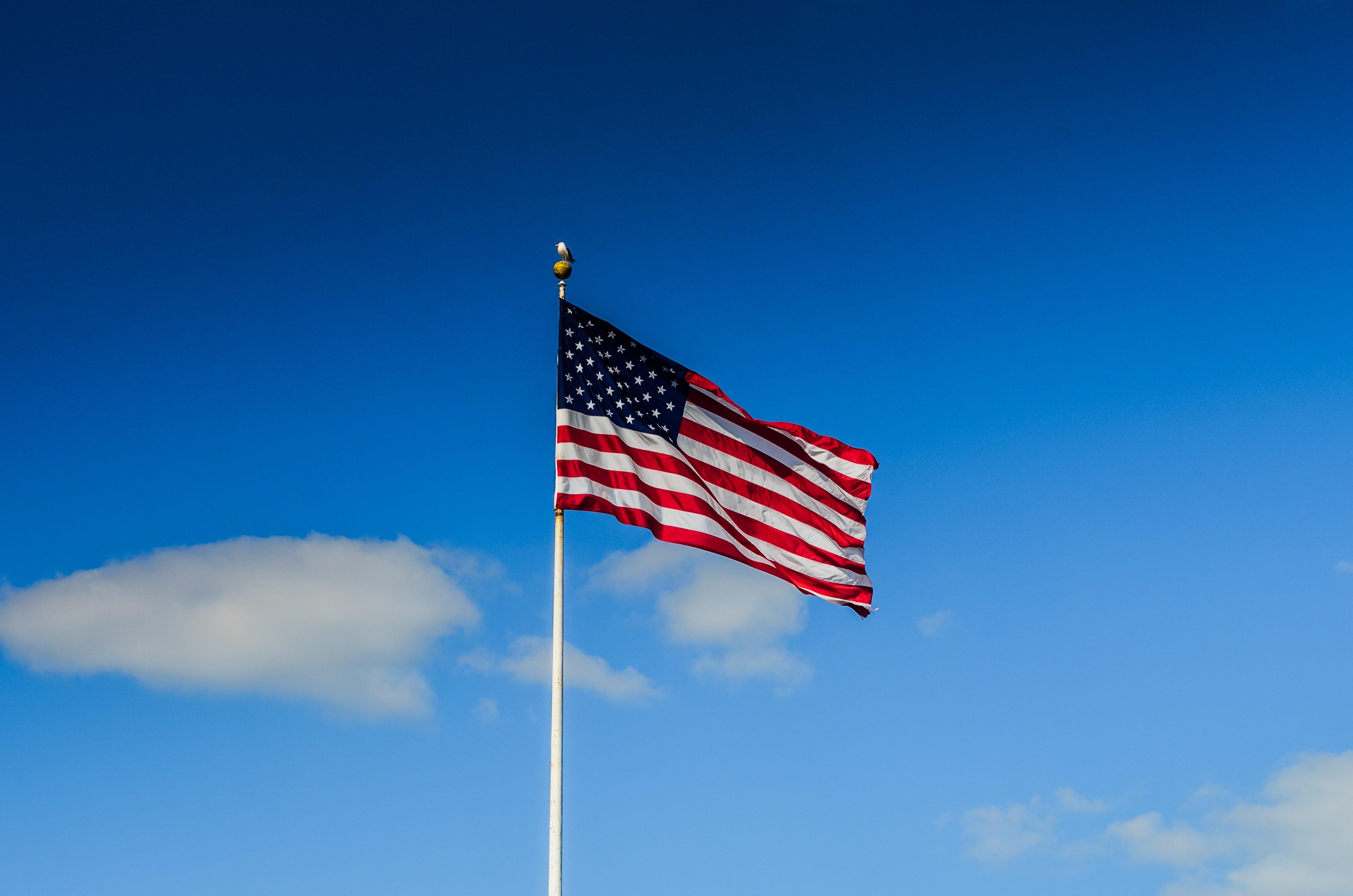 Quanto tempo demora para sair o visto de estudante americano
